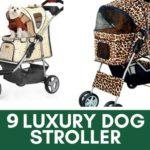 Luxury Dog Strollers