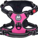 Pull Dog Harness