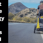 Best Bike Buggy For Dogs 2021