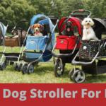 6 best dog stroller for hiking